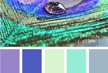 Color and pattern inspiration / by Amber Kazmir