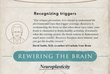 Understanding the Brain, Changing the Brain
