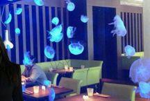 Medusarios / Acuarios de medusas Medusarios