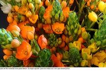 #Flor y #Eventos