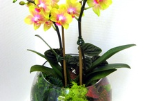 Kvetinové dekorácie