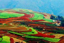 Travel   China - Yunnan Province