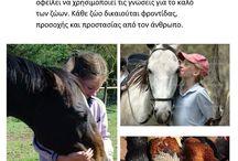 Ημέρα των ζώων