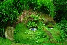 Garden ☆ All / Garden planning ideas. / by Jenaria's Realm