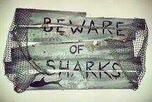 Boys Shark bedroom