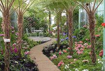 cărări de grădină