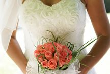 Wedding / Everything about Wedding