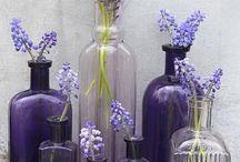 Purple vintage