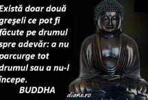 citate Buddha