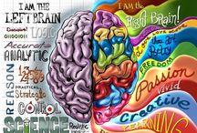 linker of regter brein