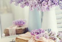 lilac flowers and books
