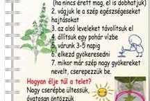 ♡~[Kertészkedjünk]~♡