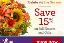 Flowers deals