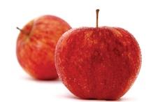 Maçãs / Trabalhamos com maçãs biológicas produzidas na região Oeste. Com elas produzimos aguardente e licor de maçã, sidra, vinagre de sidra e maçãs desidratadas - e com os nossos produtos muitas outras coisas deliciosas se podem fazer... deixamos algumas sugestões!