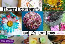 Homeschool Science - Botany