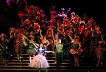 Musicals / by Laura Jane Smith (Godfrey)