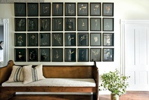 Frames/Wall decor