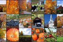 Autumn / I ♥ everything about Autumn!