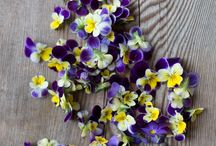 Flowers-Misk