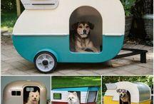 pets camper