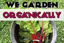 Garden Fresh Gardening! / All things gardening