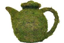 Home & Garden Topiary / Beautifully made Topiary for the home & Garden