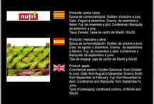 Nufri SAT 1596 / Cooperativa de Fruita de Mollerussa