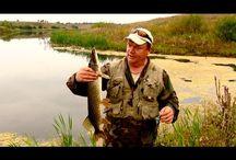 Ловля щуки на пруду. Рыбалка на Севере.