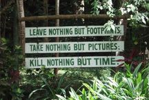 Cool signs and quotes