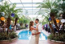 [Fall Knickerbocker Estate Wedding] / A brightly colored Fall wedding using royal purple and gold with accents of orange at a private five acre estate in East Naples, Florida. Designed and styled by KC Weddings and Events.  / by Kara Cardinal
