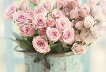 Blumen ♡