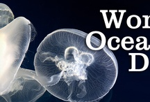 Oceans- of- Life / by Roberta Hunter