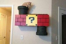 cat things