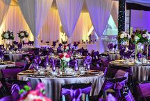 Venues of the Day / Everyday we post a new favorite location as our Venue of the Day.