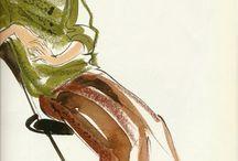 Kojiro Kumagai Illustrations