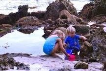 Montessori-inspired summer fun