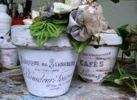 Ideas: Gardening, Houseplants, Outdoor Hints / by Brenda Galley