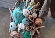 Driftwood & Sea Shells