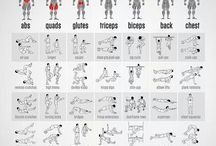 exercises + workouts