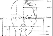 Face drawing proportion
