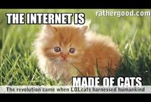 The Internet is Made of Cats. / Cats.
