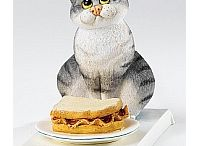 Collectables for the Cat Lover / Sculptures and Figurines that we would all love to own............