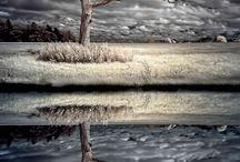 Fotografia que adoro / photography