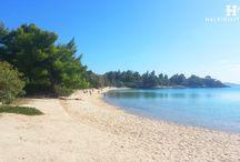 HalkidikiTravel.com - Akti Kalogrias beach in Halkidiki