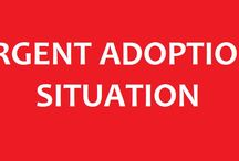 Adoption Situations / Adoption Situations