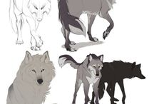 wolf character design