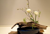 Japan: Ikebana