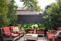 Backyard / by Jen