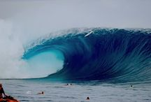 Ocean / by Sharon Pribble