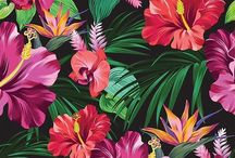 Tropic Flowers Pattern